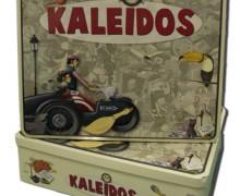 303_kaleidos1_1228429085