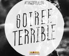 soiree-terrible
